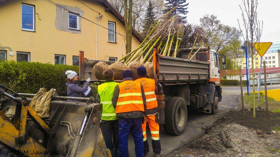 Kozi Bród sadzenie drzew-6 (Kopiowanie)