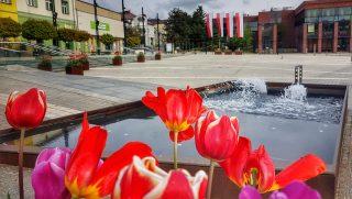 Rynek fontanny (9)
